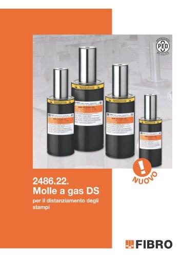 Molle a gas DS per il distanziamento degli stampi