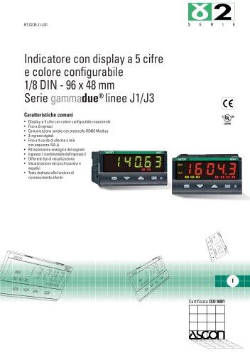 Indicatori di Temperatura e di Processo