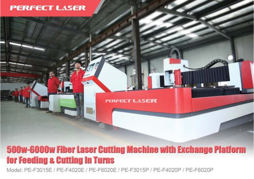500w-6000w Fiber Laser Cutting Machine with Exchange Platform for Feeding & Cutting In Turns