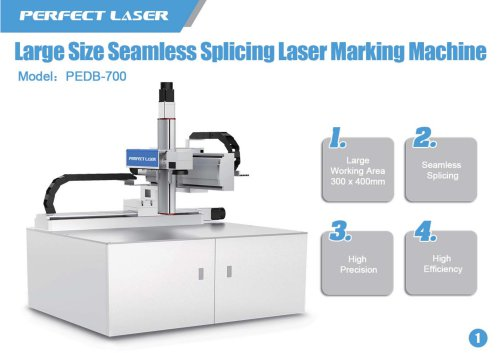 Perfect Laser fiber laser marking machine PEDB-700