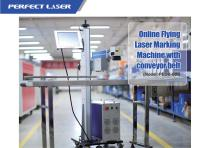 Perfect Laser- Lifting Type Laser Marking Machine for Bottles or Production Line PEDB-600