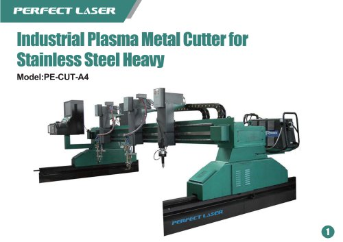 Perfect Laser Plasma laser cutter Heavy PE-CUT-A4