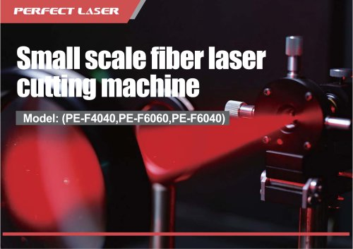 Perfect Laser-Small Scale Fiber Laser Cutting Machine PE-F4040  6060 6040