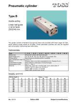 Pneumatic cylinder Type B